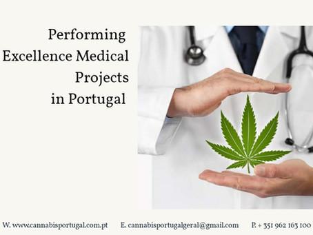 Importância da Cannabis Medicinal para a saúde.