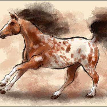 Appalloosa watercolor by cristalwolf.jpg