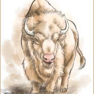 Bison watercolor by Cristalwolf.jpg