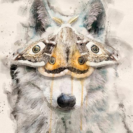 Moth Way by Cristalwolf web.jpg