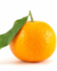 orange-mandarin-with-leaf-small.jpg