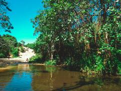 Sodwana Bay.jpg