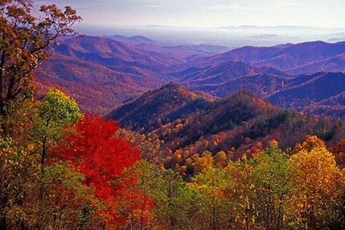 Fall Yoga and Hiking Retreat in Georgia - Deposit