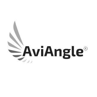 AviAngle (2).png