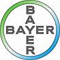 bayer logo.webp