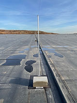 Seagull Grid Wire Pole