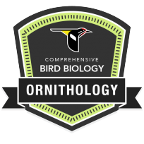 badge-ornithology-complete-204x204.png