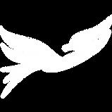 white aviaway bird.png