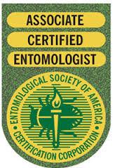 Associate Certified Entomologist