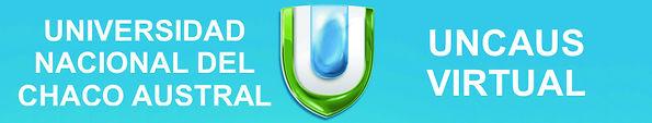 UNCAUS.JPG