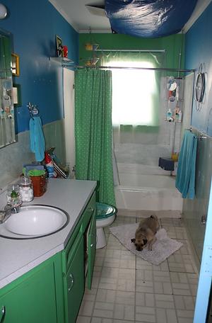 baño viejo.png