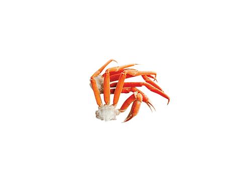 Boîte Signature Crabe des neiges 7lbs