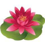 Water lily pink cartoon new.png