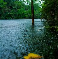RainLakePost.jpg