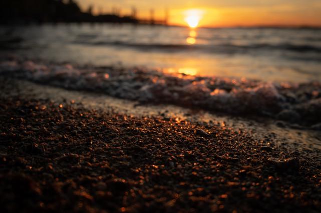 The Shores We Walk