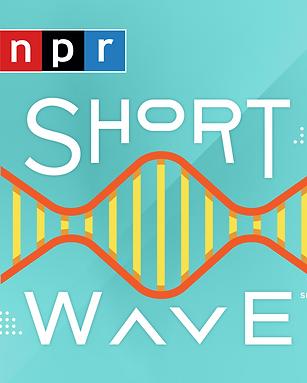 short wave.png