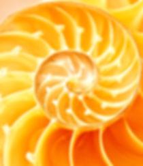 gold-spiral-300x300.jpg