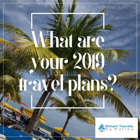 What are you plans for 2019?
