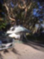 SA2_edited.jpg