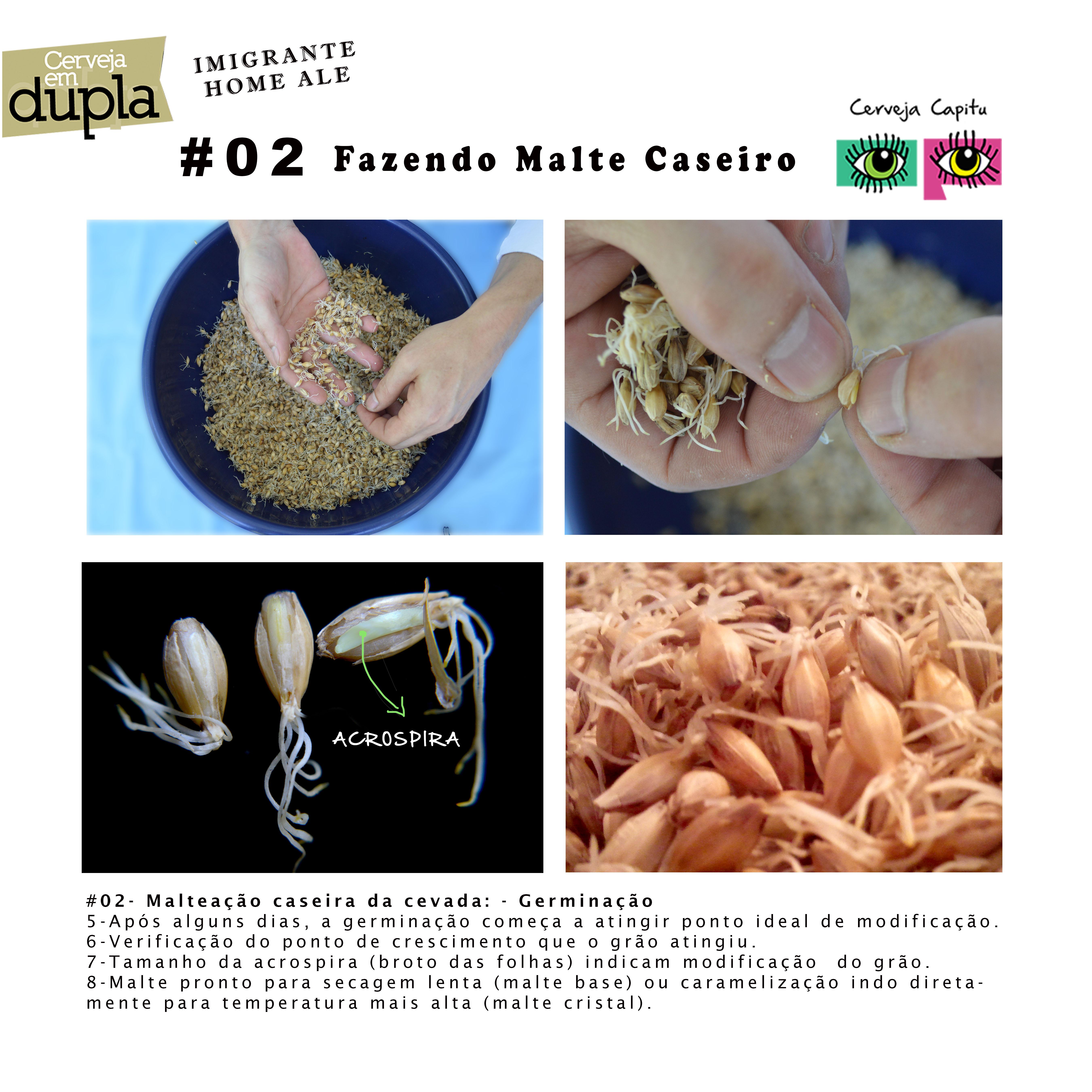 Capitu Malte Caseiro02.jpg
