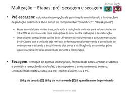 Princípios da Malteação_Capitu_SM_Page_09.jpg