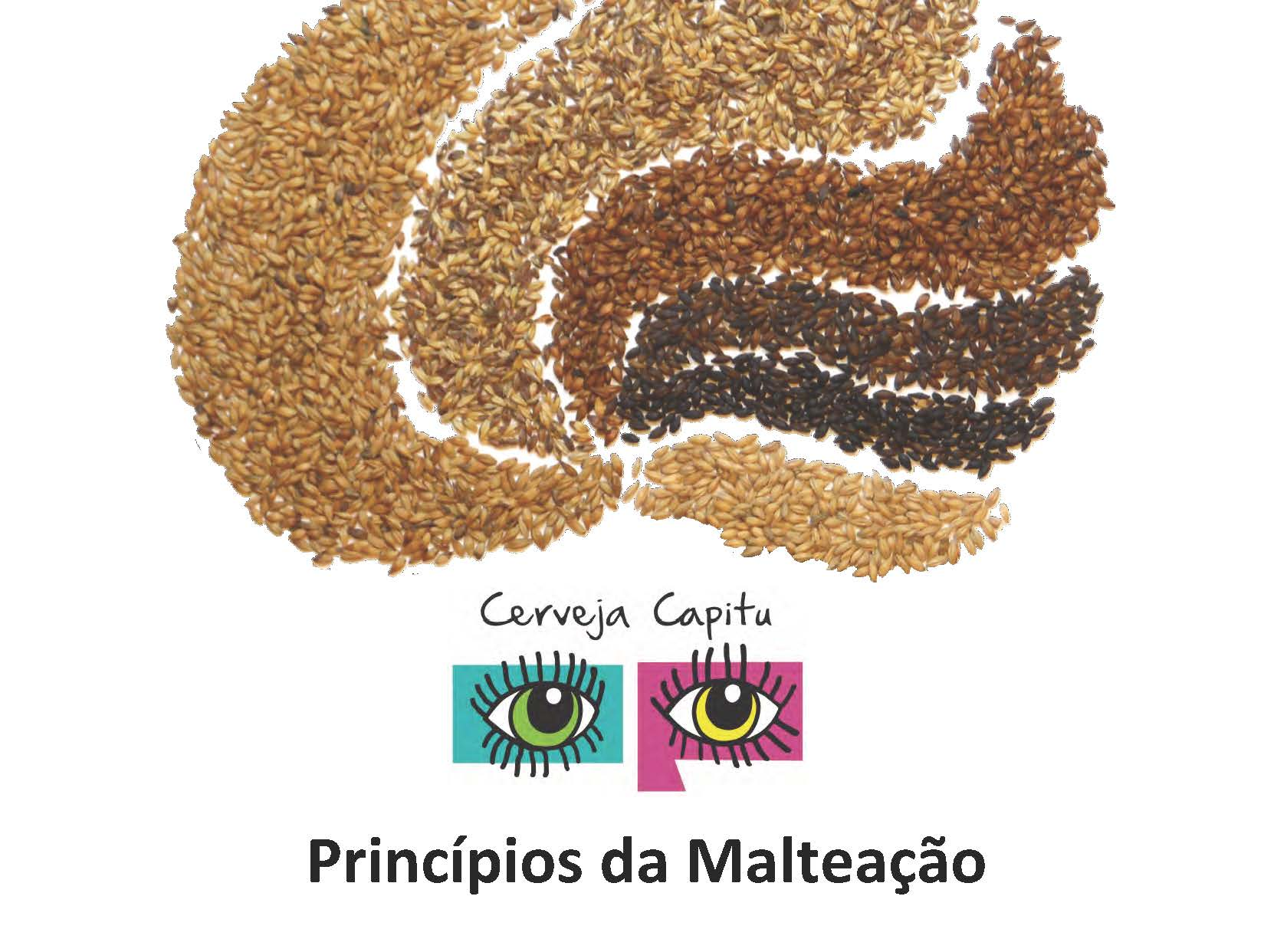 Princípios da Malteação_Capitu_SM_Page_01.jpg