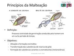Princípios da Malteação_Capitu_SM_Page_02.jpg
