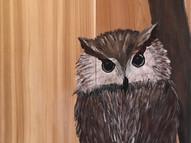 cedar board owl.jpg