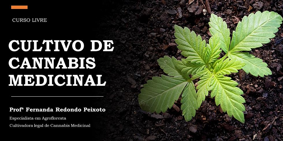 Cultivo de Cannabis Medicinal
