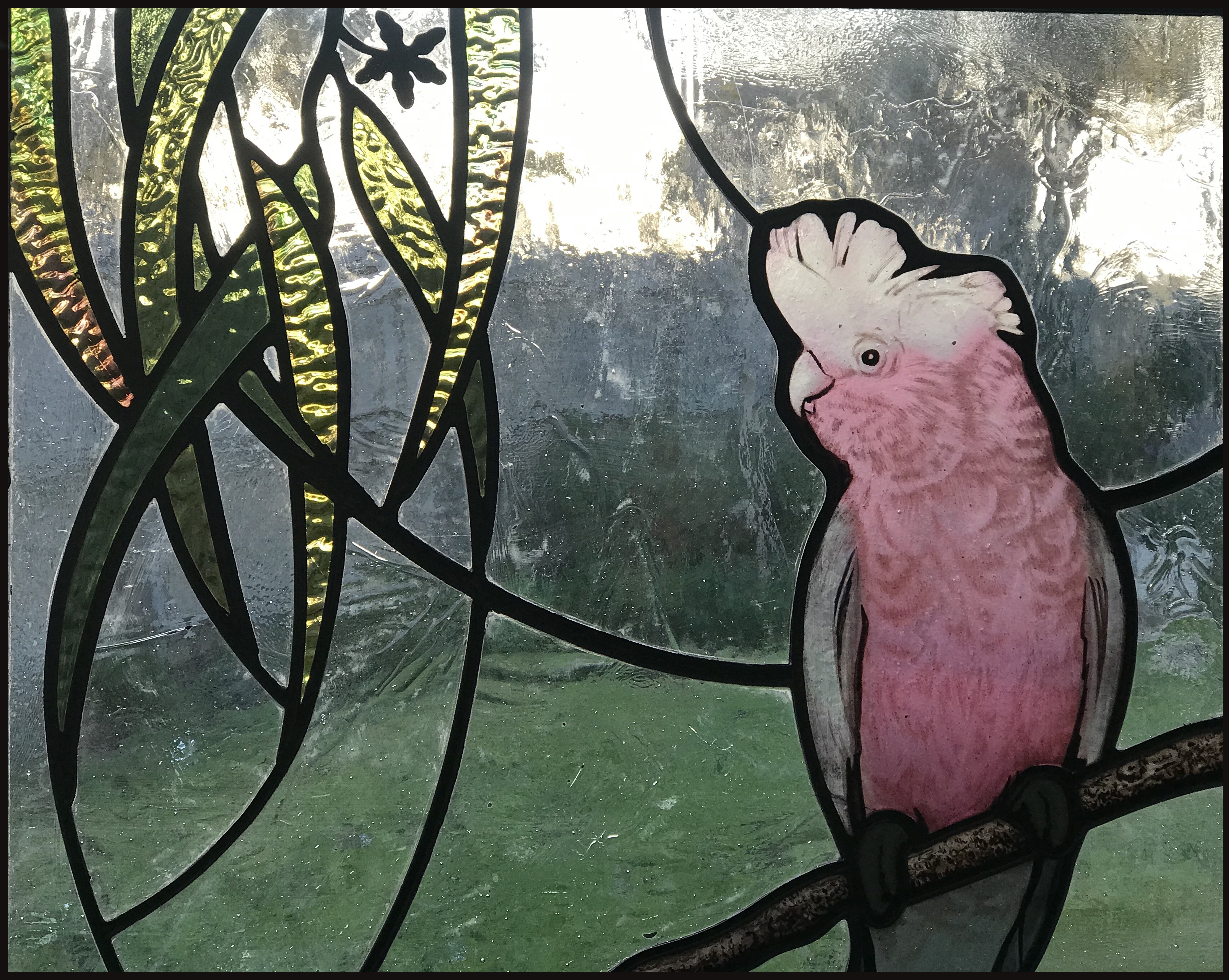 gum leaves Galah Australian stained glas