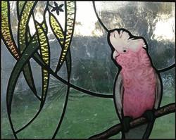 gum leaves Galah Australian stained glas