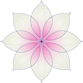 Heidi-Sheppard-Primary-Flower.png