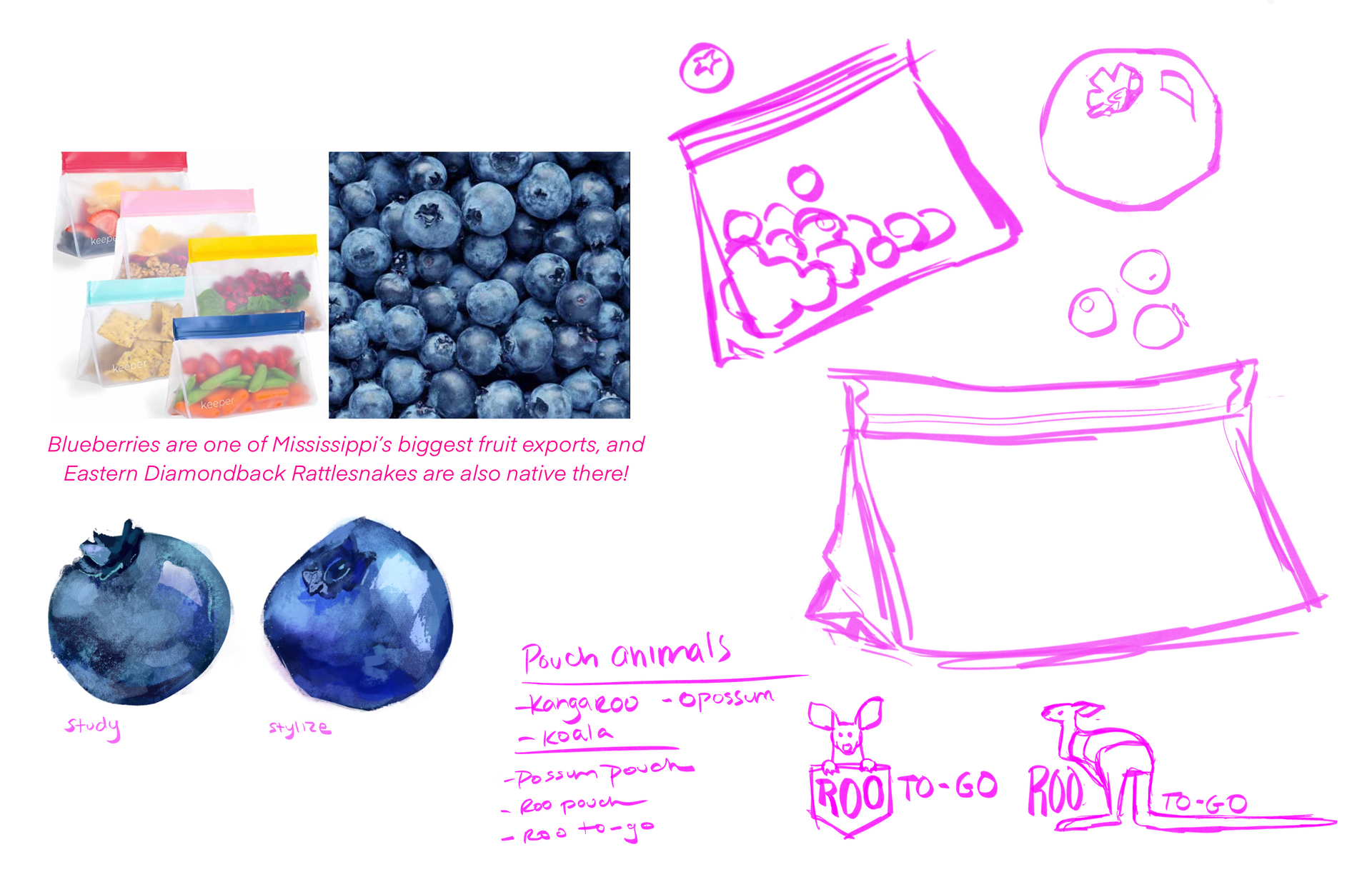 BasilLunch_Berries_Sketch.PNG