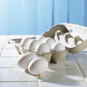 eggs-356107_1920.jpg
