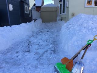 除雪作業の日々・・・