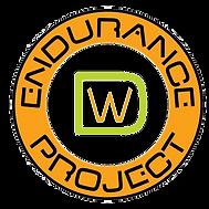 Endurance logo1.png