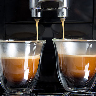 Siskin Espresso.png