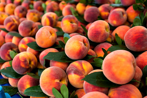 Freestone Peaches (GA & SC)