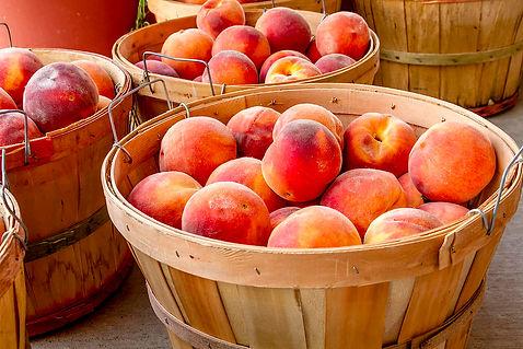 peach-harvest-teri-virbickis.jpg