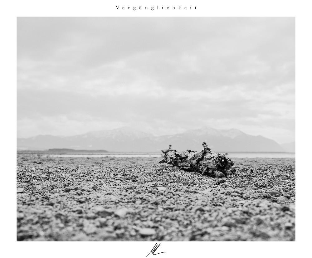 Chiemsee, analog Fotografie,Titel: Vergänglichkeit, Mamiya RB 67