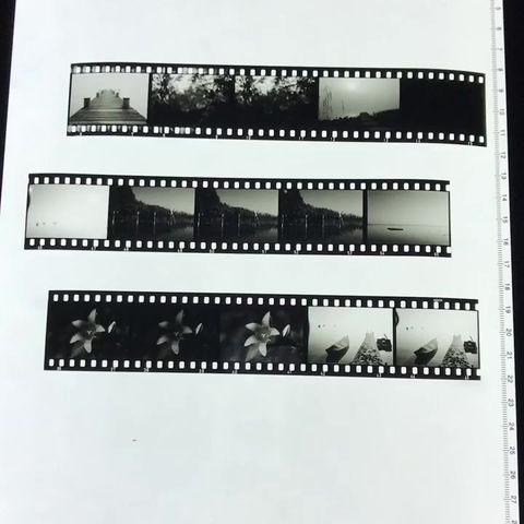 Schwarz-Weiß Diafilm   Scala Prozess
