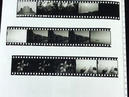 Schwarz-Weiß Diafilm | Scala Prozess