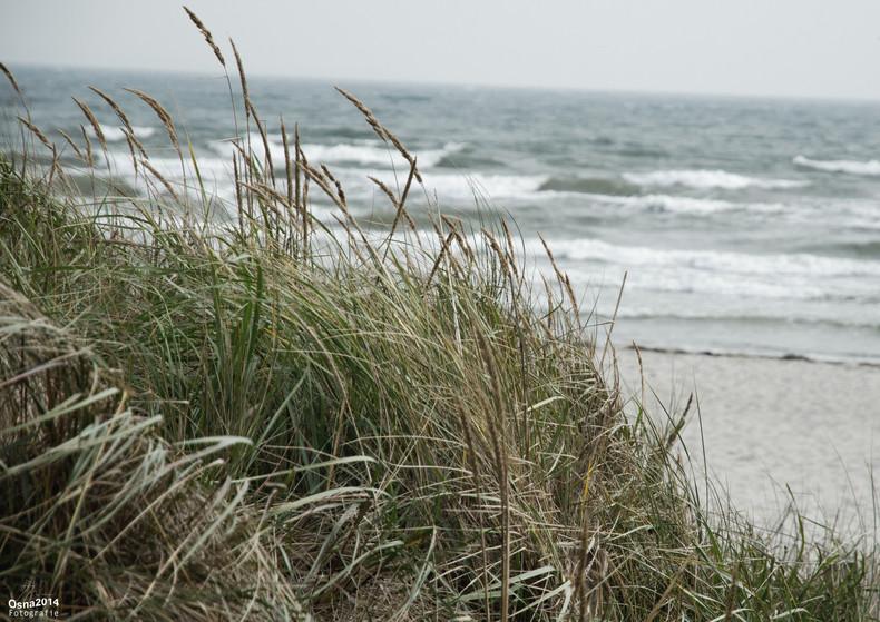 auch die Ostsee kann rauh sein...