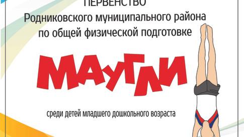 """Первенство Родниковского муниципального района """"Маугли"""""""