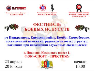 Фестиваль боевых искусств г.Иваново