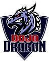 Логотип новый Дракон.jpg