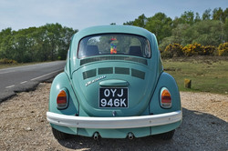 rear1