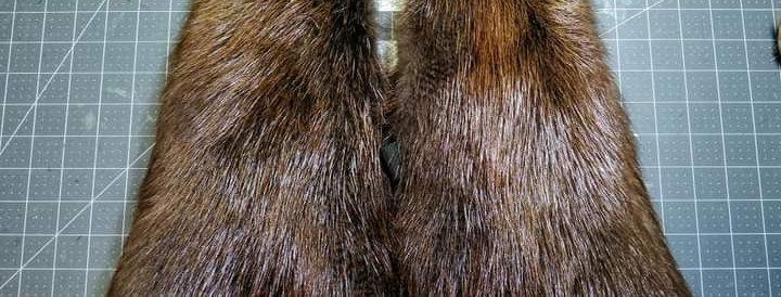 Beaver mitts M