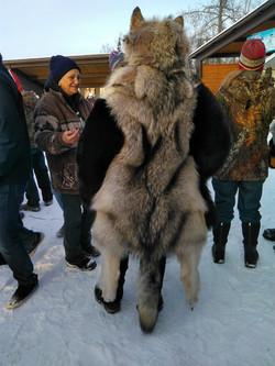 WolfBear Back