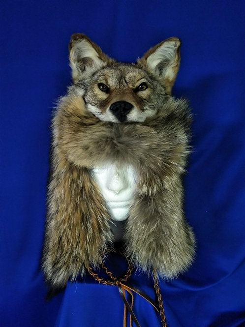 Mounted coyote head hat